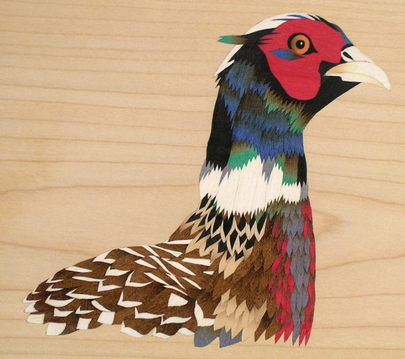 Marquetry pheasant